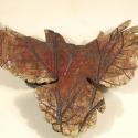 Leaf Bird-1
