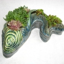 Fish Pot -1