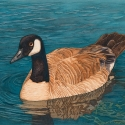 Goose eh?